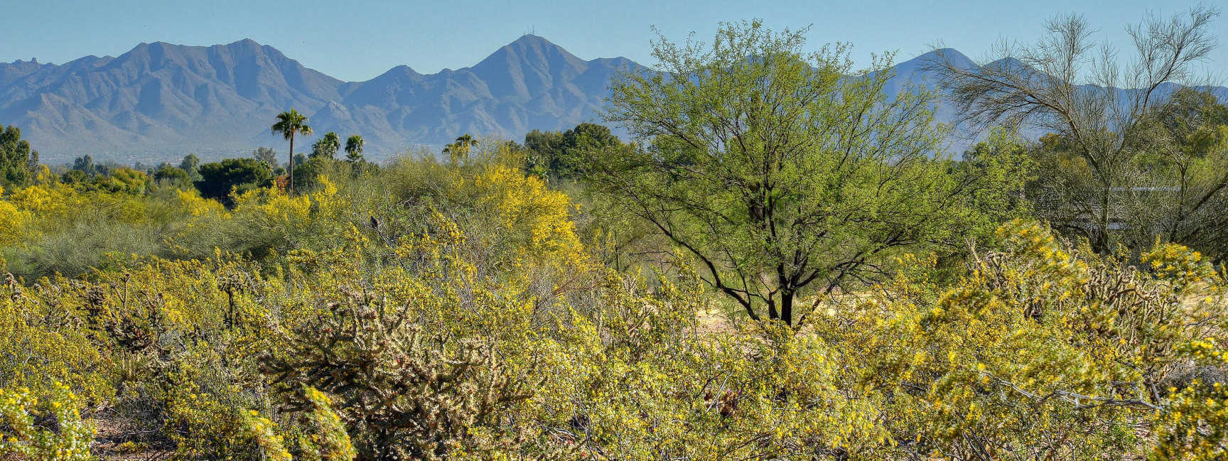 $3,649,000 - Br/Ba -  for Sale in Mummy Mountain Park, Paradise Valley