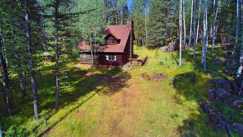 Flagstaff Cabin Property For Sale - Marcella Lambert   Sonoran Sky
