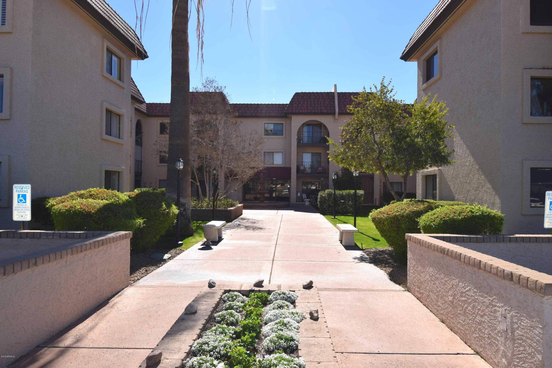 Phoenix - Marcella Lambert   Sonoran Sky Real Estate   Realty ONE Group