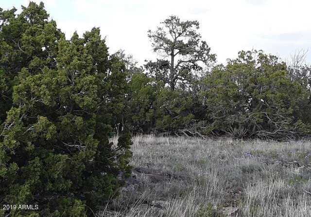 $2,900 - Br/Ba -  for Sale in Concho