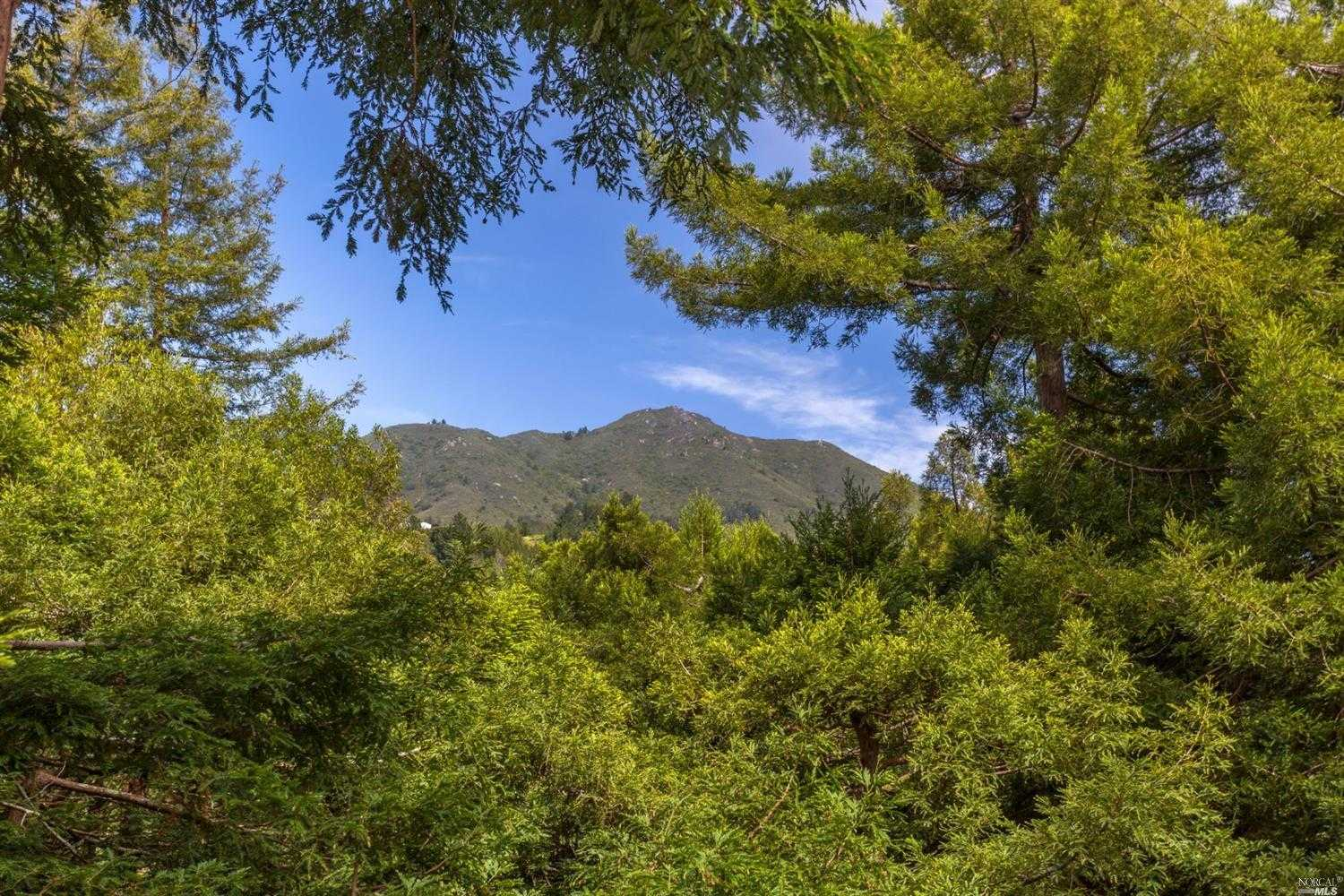 $1,295,000 - 2Br/2Ba -  for Sale in Mill Valley