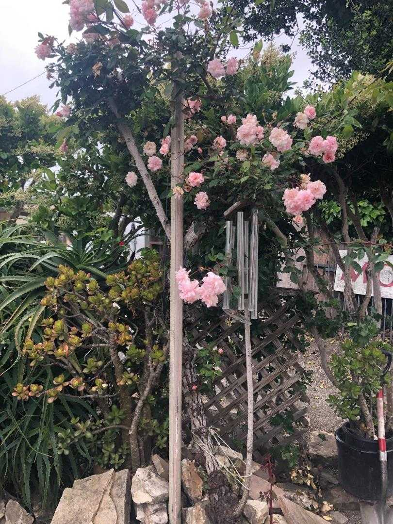 $675,000 - 4Br/2Ba -  for Sale in Monterey
