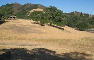 $380,000 - Br/Ba -  for Sale in Morgan Hill