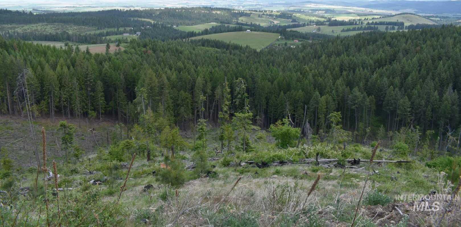$3,500,000 - 4Br/1Ba -  for Sale in 0 Not Applicable, Potlatch