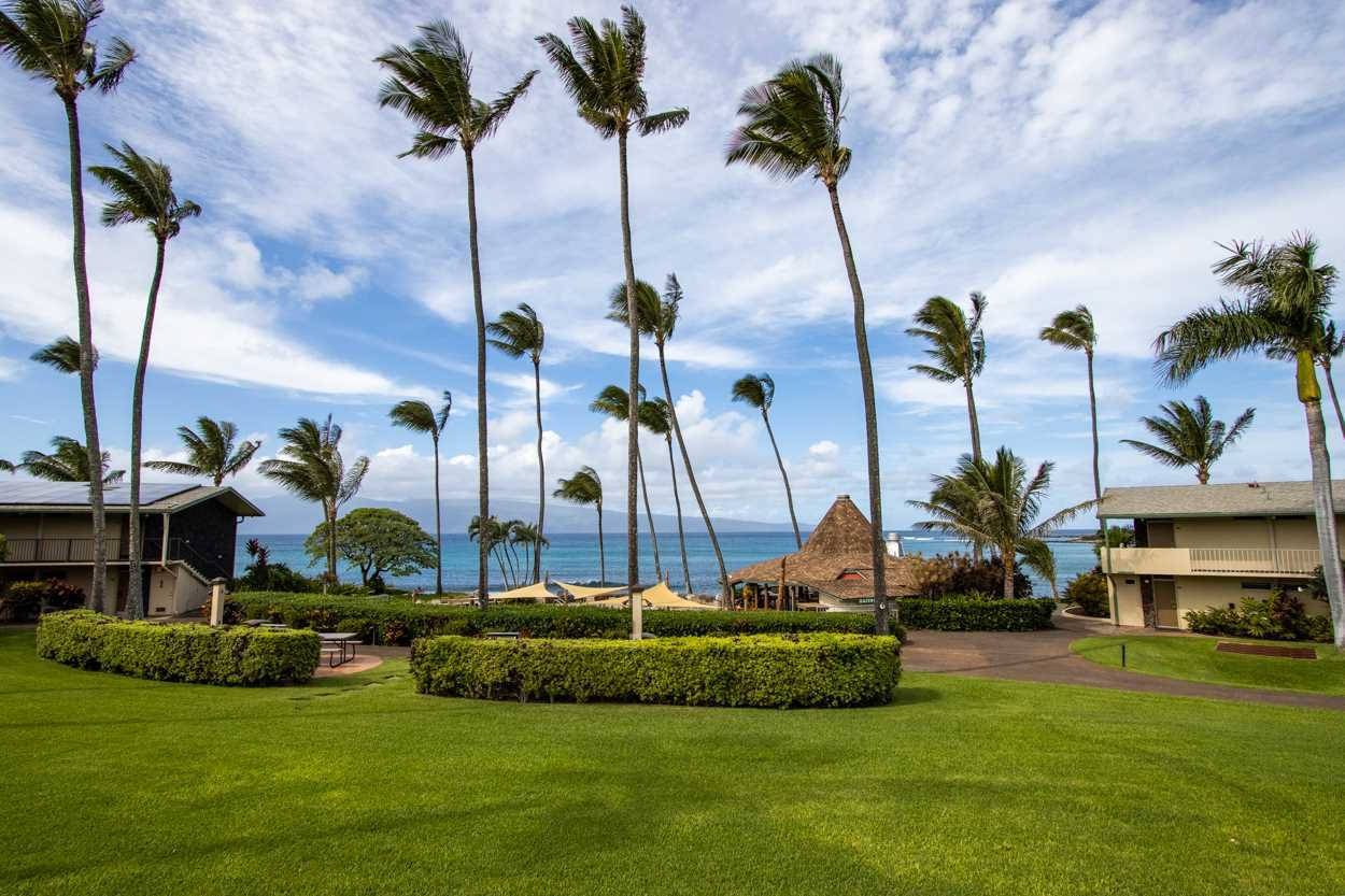 $539,500 - 1Br/1Ba -  for Sale in Napili Shores, Lahaina