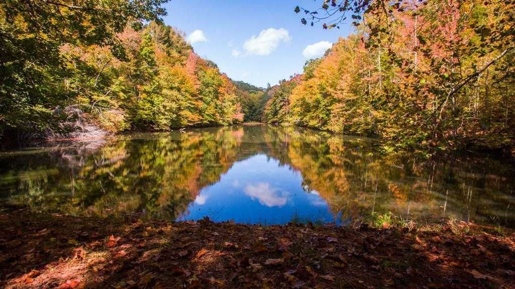 $2,900,000 - 4Br/3Ba -  for Sale in Leipers Fork, Franklin