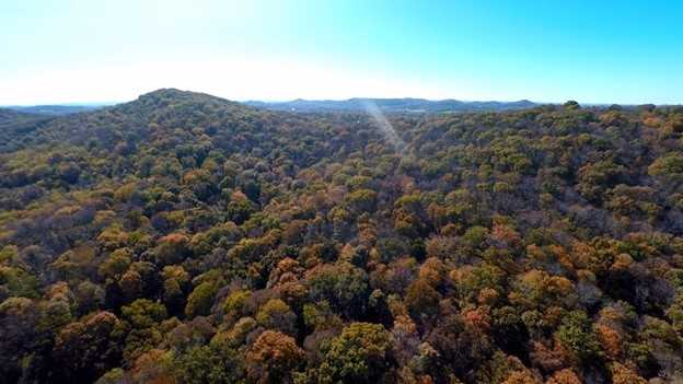 $7,900,000 - Br/Ba -  for Sale in Holt Knobs, Brentwood