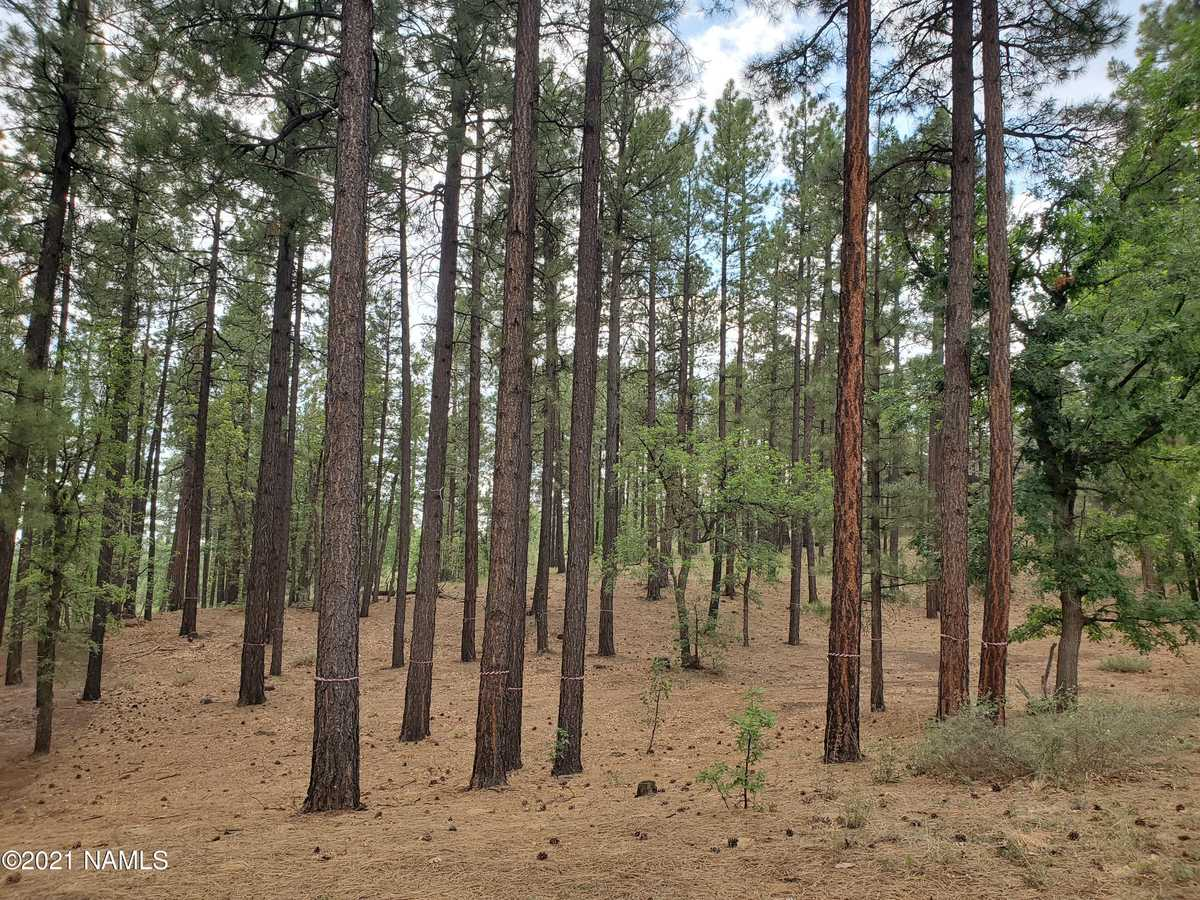 $249,900 - Br/Ba -  for Sale in Flagstaff