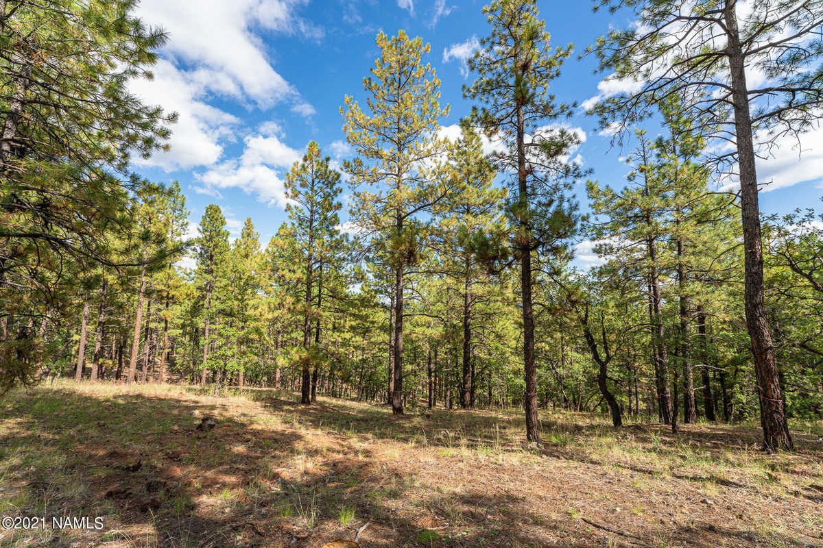 $365,000 - Br/Ba -  for Sale in Flagstaff