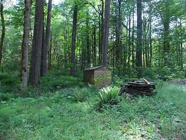 $38,000 - Br/Ba -  for Sale in Rhododendron