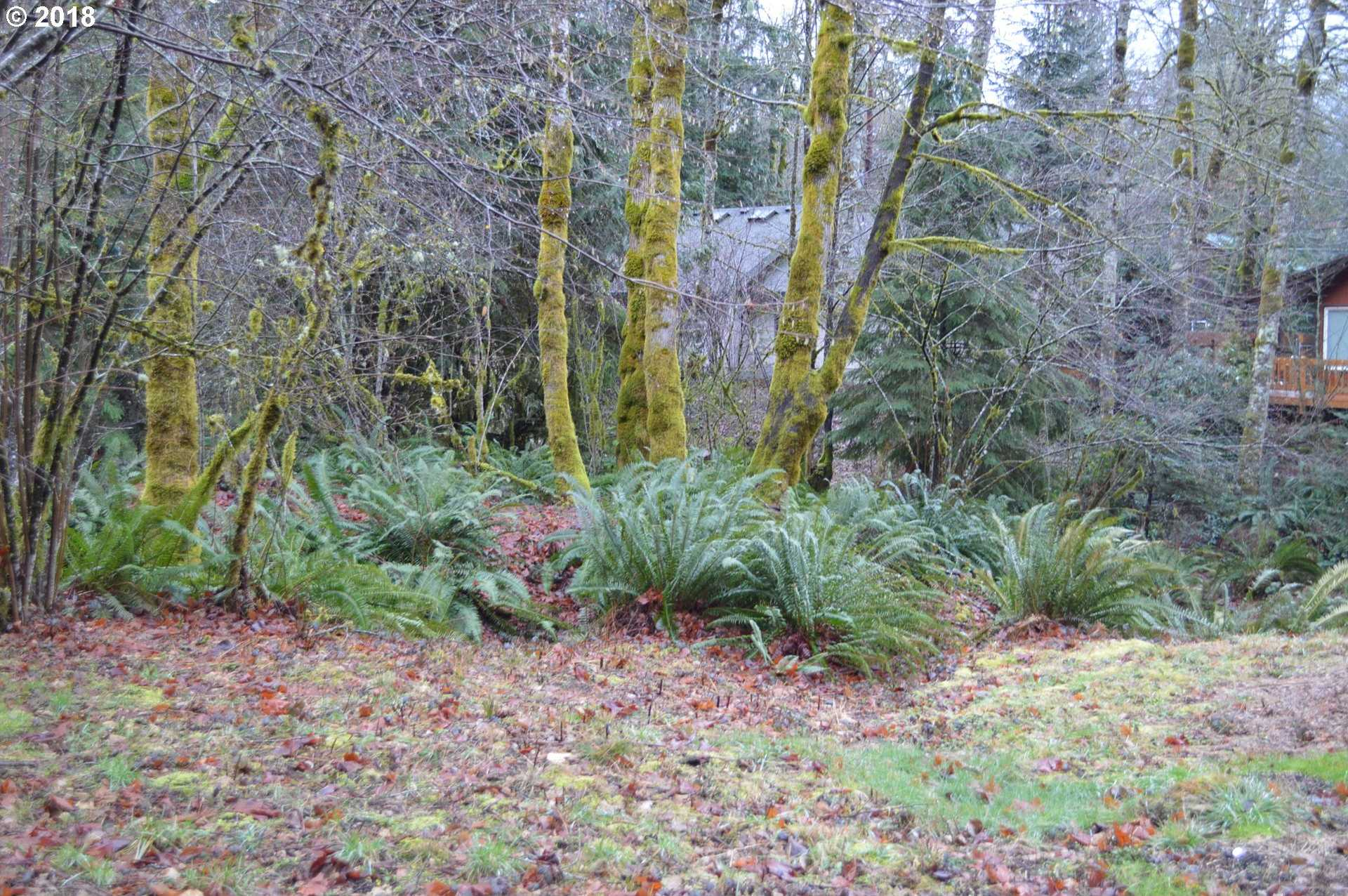 $79,950 - Br/Ba -  for Sale in Rhododendron