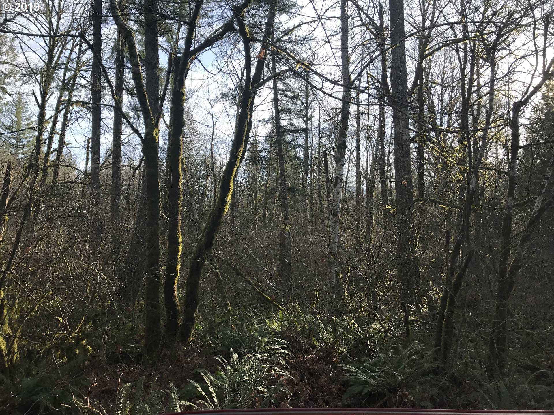 $79,000 - Br/Ba -  for Sale in Rhododendron