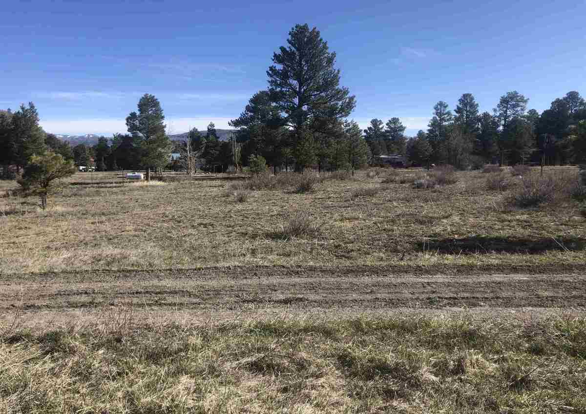 $28,500 - Br/Ba -  for Sale in Chama