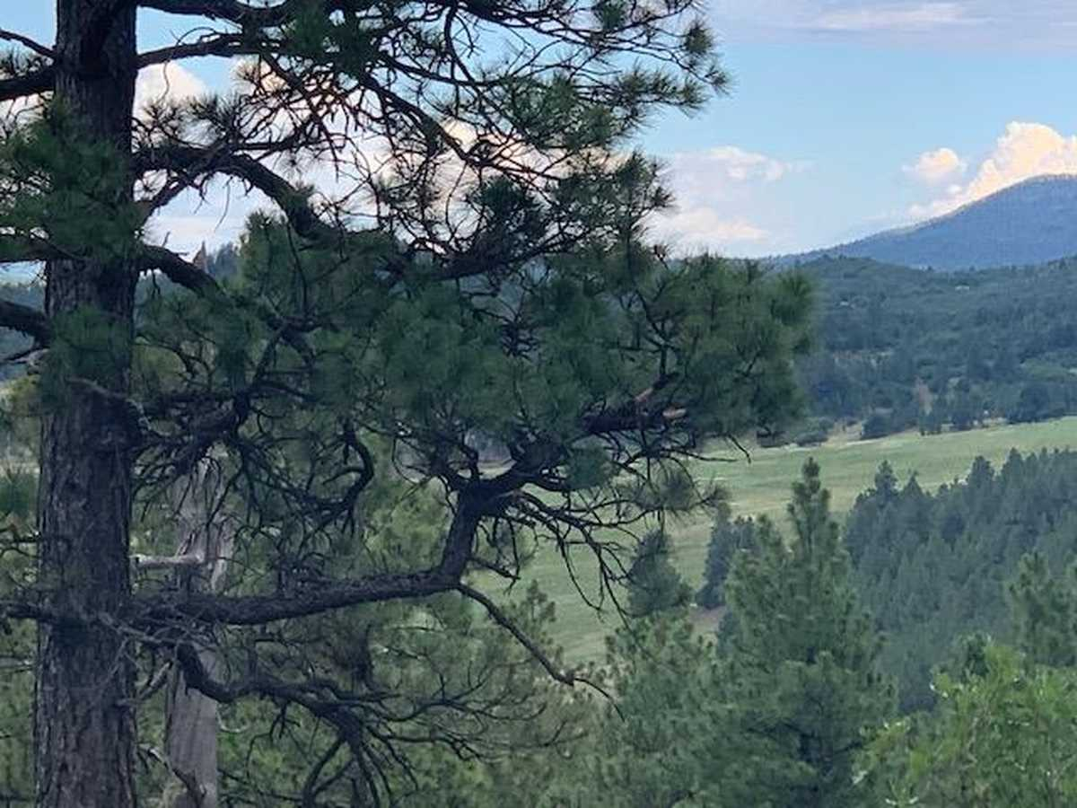 $99,000 - Br/Ba -  for Sale in Diamante Acres, Chama