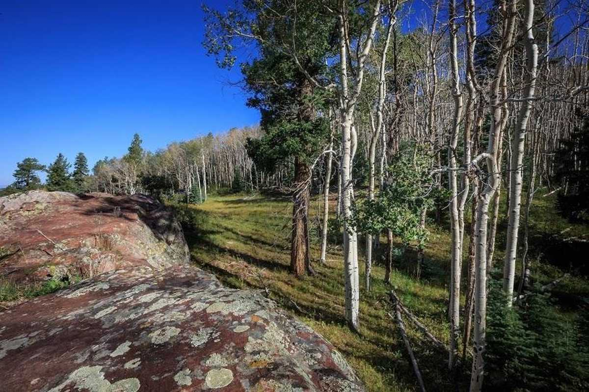 $699,000 - Br/Ba -  for Sale in Chama