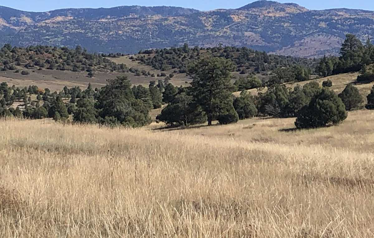 $499,900 - Br/Ba -  for Sale in Willow Way, Chama