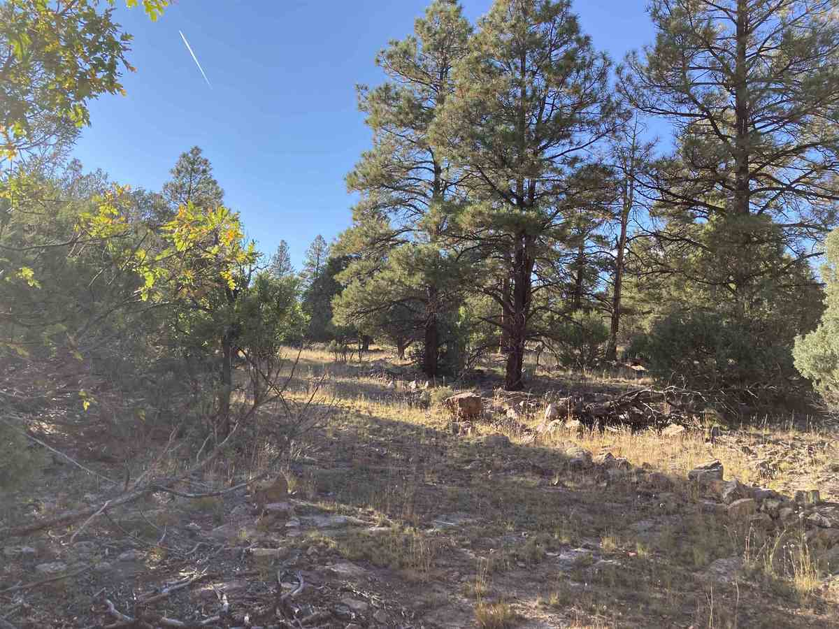 $22,500 - Br/Ba -  for Sale in Rutheron
