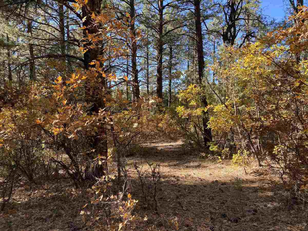 $60,000 - Br/Ba -  for Sale in Chama