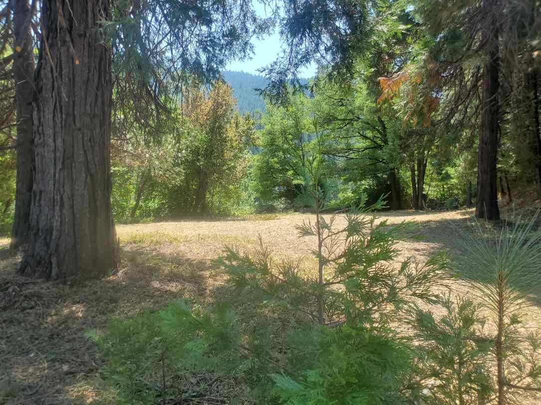 $44,000 - Br/Ba -  for Sale in Dunsmuir