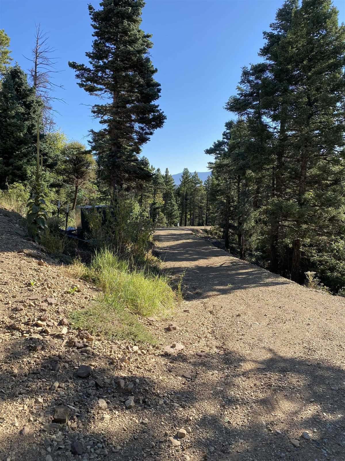 $299,000 - Br/Ba -  for Sale in Taos Pines, Angel Fire