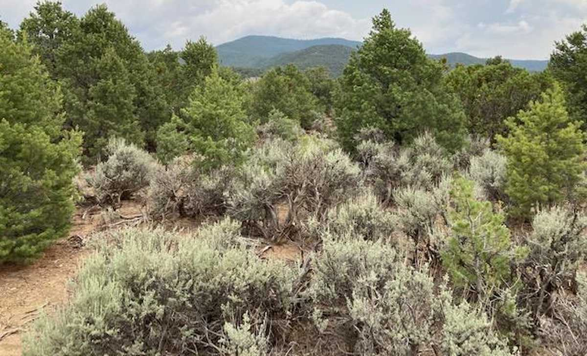 $175,000 - Br/Ba -  for Sale in Weimer, Taos