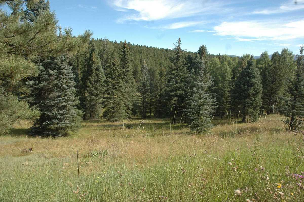 $10,000 - Br/Ba -  for Sale in Country Club 1&2 Reamended, Angel Fire